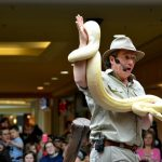 Use-reptile-shows-to-draw-crowds-to-your-shopping-centre