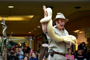 Use reptile shows to draw crowds to your shopping centre